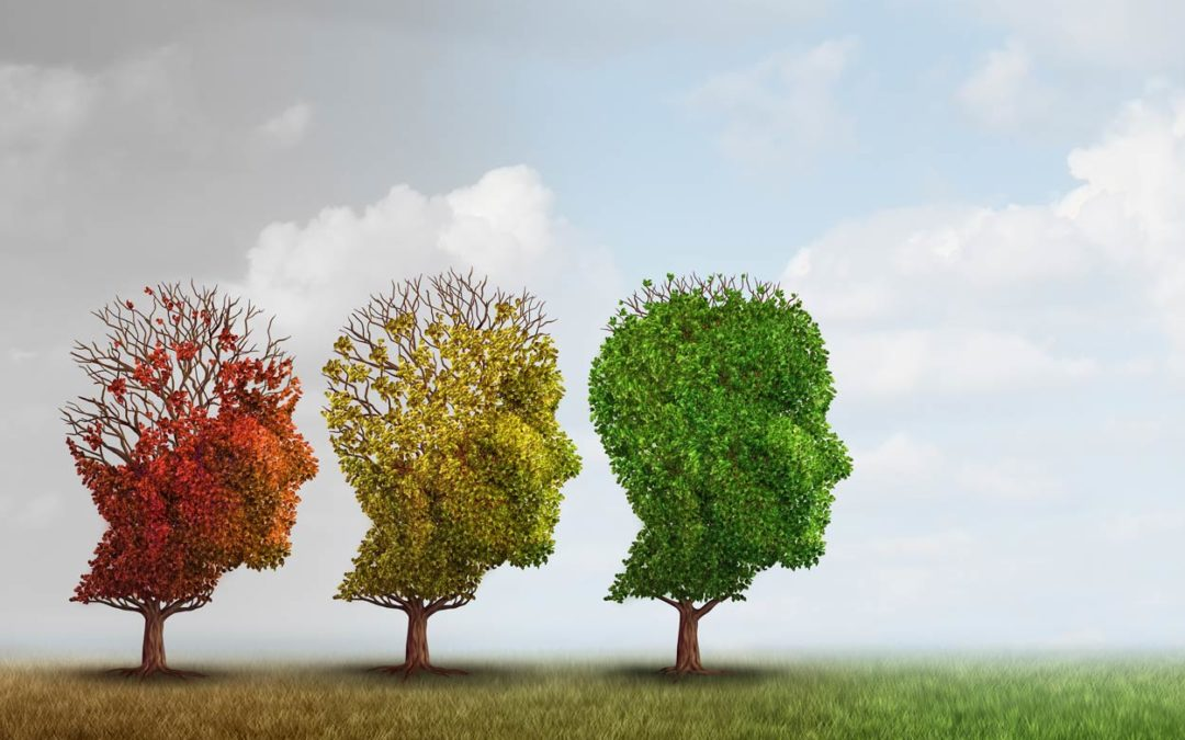 A Breakthrough in the fight against Alzheimer's