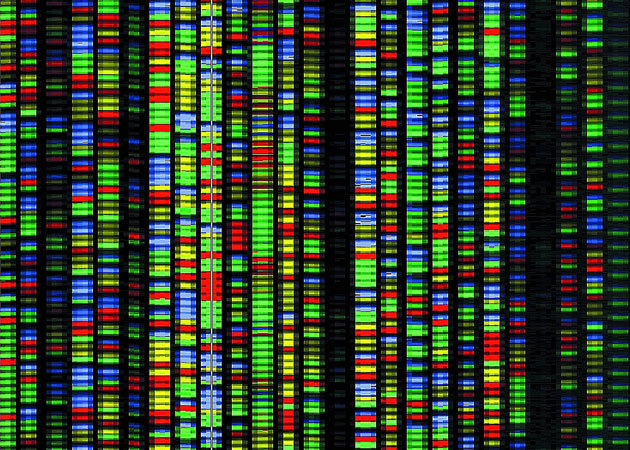 Your DNA is the future of computing: here's how you can profit