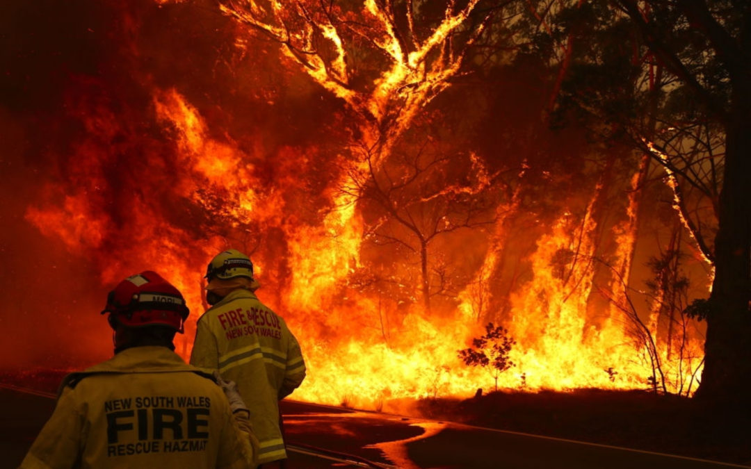 How do we stop bushfires from spreading everywhere?